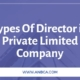 Types Of Director in Private Limited Company